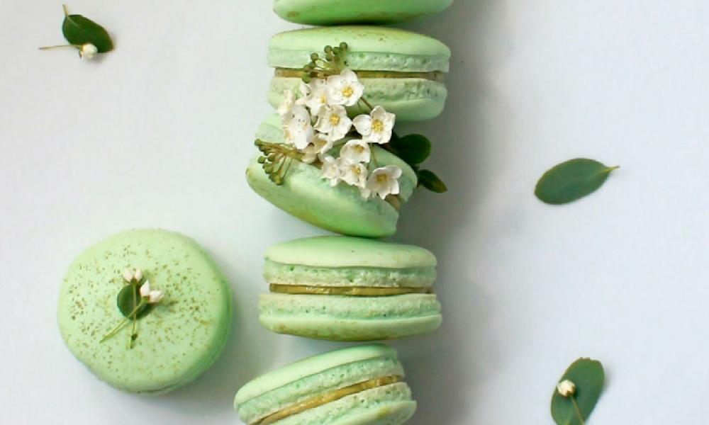 Macarons au thé vert mâcha, Sadaharu AOKI