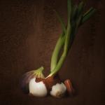 Ganache aux oignons caram+®lis+®s La Maison du Chocolat -«Caroline Facciol