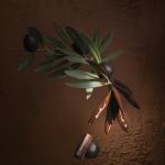 Pralin+® aux olives noires La Maison du Chocolat -«Caroline Faccioli