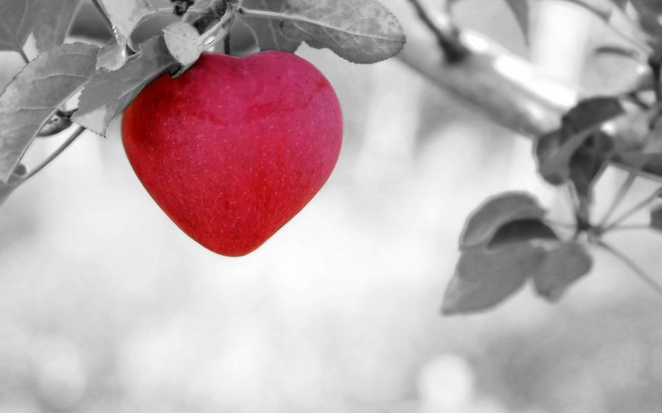 Amour love coeur