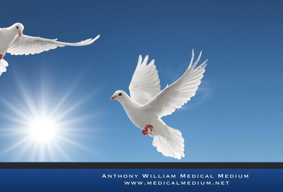 medical-medium